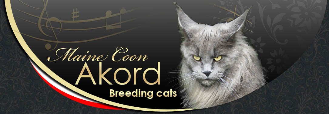 Breeding cats